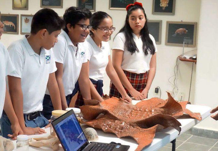 En el Día Mundial del Medio Ambiente, estudiantes del Centro Escolar Escocia, visitaron Ecosur. (Joel Zamora/SIPSE)