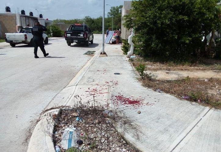Manchas hemáticas halladas en la vía pública, cerca de la casa de la víctima.  (Milenio Novedades)