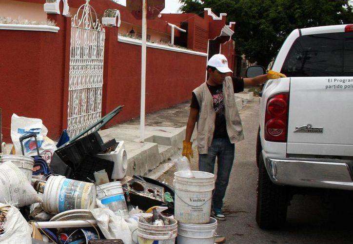 Es necesario reforzar las acciones de combate a criaderos del mosquito transmisor del dengue y chikungunya en Yucatán. (Archivo/SIPSE)