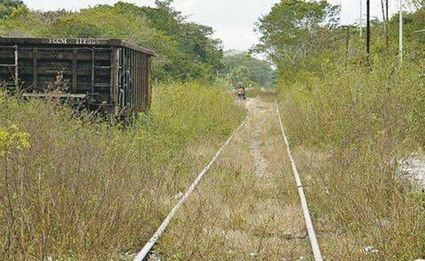 La construcción de la ruta del Ferrocarril del Istmo de Tehuantepec fue un hecho histórico para el país. (Daniel Cruz/Milenio)