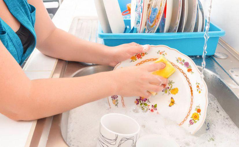 Científicos señalan que las densidades bacterianas en las esponjas, sólo se encuentran en las heces. (Foto: Contexto/Internet)