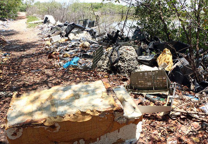 Pese a tener las playas más frecuentadas en esta temporada vacacional, Progreso recibe a sus visitantes con calles con basura. (Jorge Acosta/Milenio Novedades)