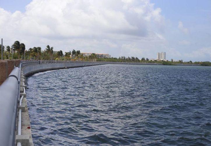 Indican que no hay área de manglares cercana a la orilla del malecón. (Israel Leal/SIPSE)