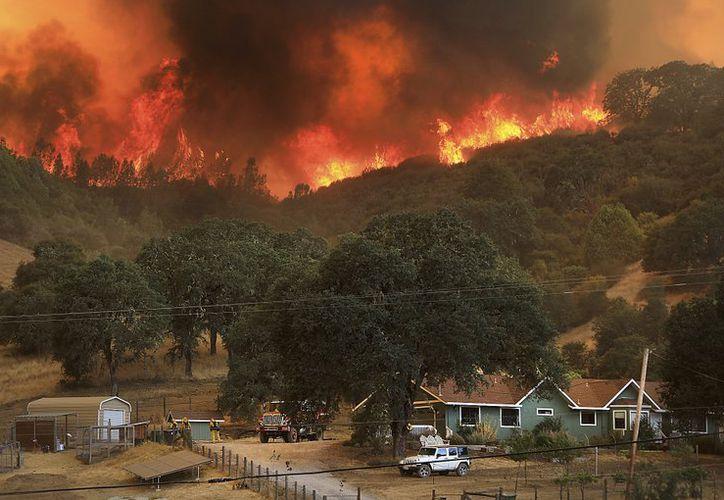 Las llamas de un incdendio forestal avanzan cuesta abajo, amenazando casas en Scotts Valley Road, California. (AP)