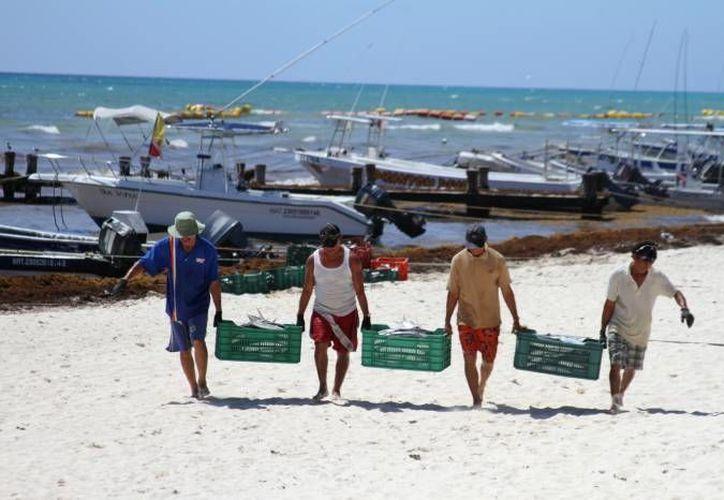 El mero rojo es una de las especies de mayor demanda en Yucatán. Imagen de contexto de un grupo de pescadores después de una jornada de trabajo en el mar. (Archivo/SIPSE)