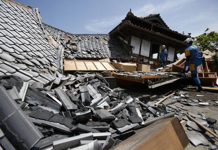 Trabajadores de rescate buscan posibles personas atrapadas dentro de casas dañadas en Mashiki, en el sur de Japón. (Agencias)