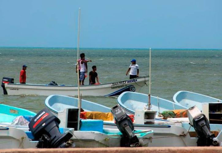 En la costa yucateca prevalece la tensión: pescadores se quejan de que personas de otros estados vienen a 'depredar' las especies marinas. (Milenio Novedades)