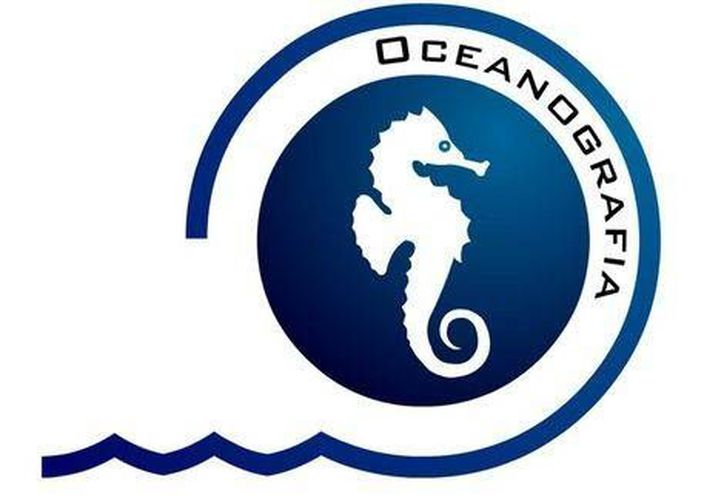 Oceanografía, proveedora de Pemex, podría estar implicada en un delito financiero. (Milenio/Foto especial)