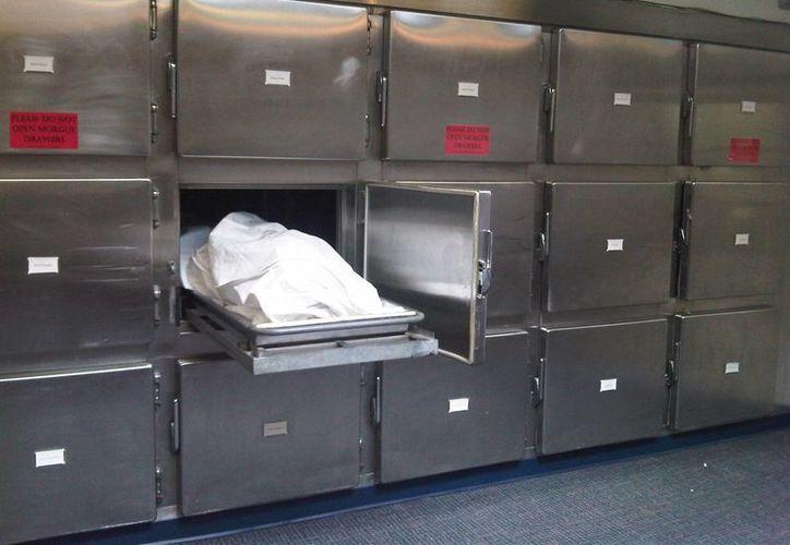 De acuerdo con la Corte de Apelaciones de NY, el médico forense no puede ser sancionado por no entregar órganos de un cadáver, ya que la ley de salud pública no castiga dicho acto. (leec.co.uk)