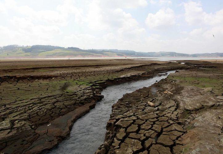 Científicos advierten sobre un incremento en las temperaturas de más de cinco grados centígrados debido a la cantidad de dióxido de carbono en la atmósfera. (EFE)