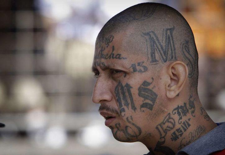 El unirse a una pandilla parece una opción inevitable para centroamericanos que ven frustrado su camino hacia Estados Unidos a través de México. (freetimeasylum.com)