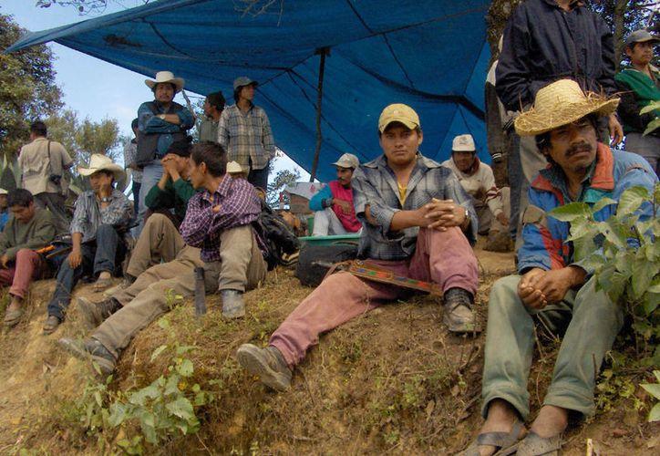 Los hombres del campo se dijeron cansados de tantos robos sin que las autoridades puedan ponerle un freno. (Jesús Caamal/SIPSE)