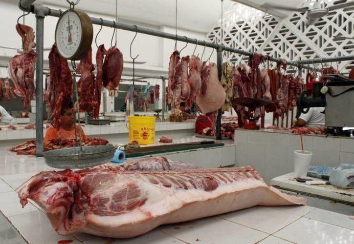 Ganaderos estiman que la producción de carne en México para 2015 ascienda a 160 mil toneladas. (Archivo/SIPSE)
