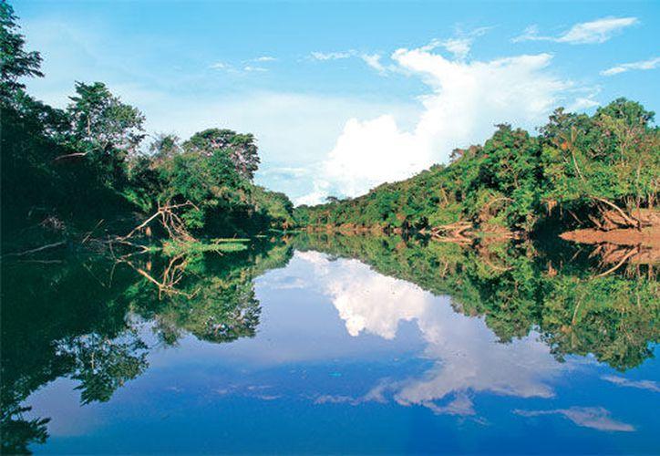 Con los decretos, 295 de las 757 cuencas del país habrán de preservar sus ecosistemas. (Internet)