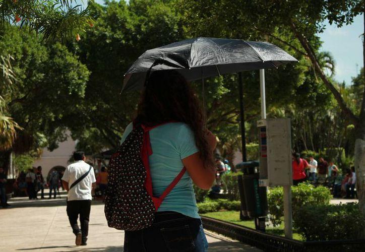 Este martes se presentaron altas temperaturas en la mayor parte del estado. (Jorge Acosta/ Milenio Novedades)