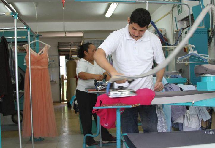 El CAM gestiona que los jóvenes realicen prácticas laborales en las empresas de la ciudad. (Carlos Horta/ SIPSE)