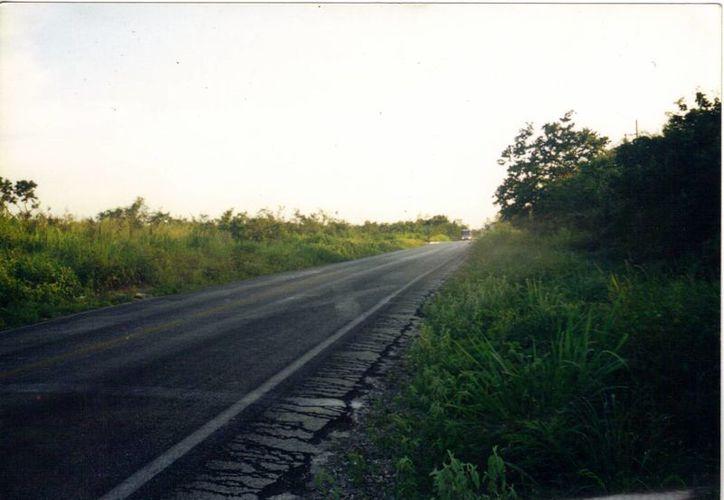 Lugar exacto donde fue el avistamiento del ovni, en la carretera Tixkokob-Tixpéual. (Jorge Moreno/SIPSE)