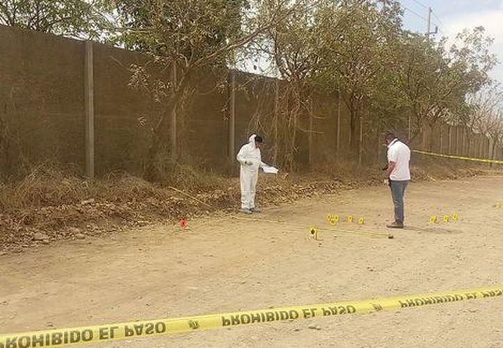 El fin de semana se encontraron en Sinaloa los cuerpos de once personas que fueron asesinadas. (Milenio)