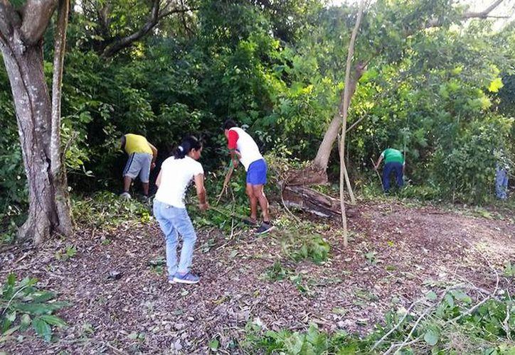 """El grupo de ciudadanos """"Bacalar Consciente"""" siempre preocupados por la limpieza de las orillas de la laguna.(Javier Ortiz/SIPSE)"""