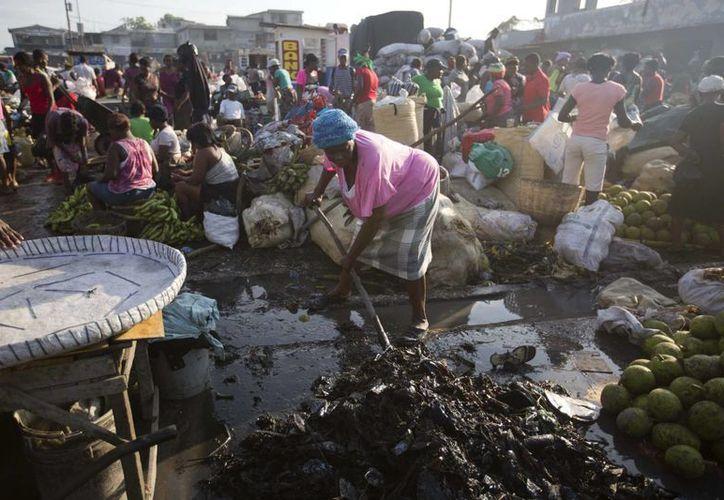 Una mujer retira desperdicios de su puesto de venta en un mercado callejero de Puerto Príncipe. Sitios como este favorecen la reproducción de mosquitos transmisores de enfermedades. (Agencias)