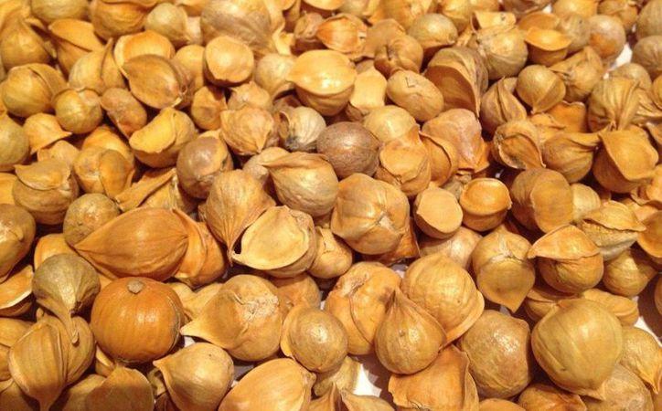El ajo chino también es de utilidad para molestias en músculos y articulaciones. (fruitionseeds.com)