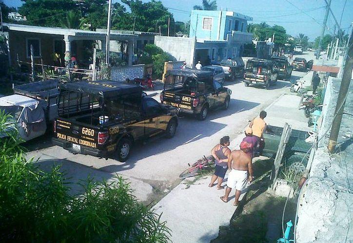 Amplio operativo en Chicxulub Puerto tras el reporte de un supuesto cargamento ilegal de pepino de mar. (Milenio Novedades)