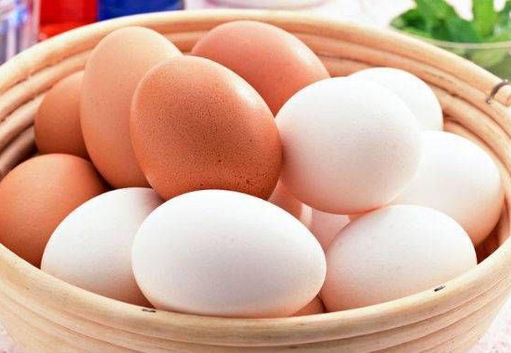 La cáscara de los huevos es la encargada de protegerlos de la contaminación por microorganismos. (Contexto/Internet)