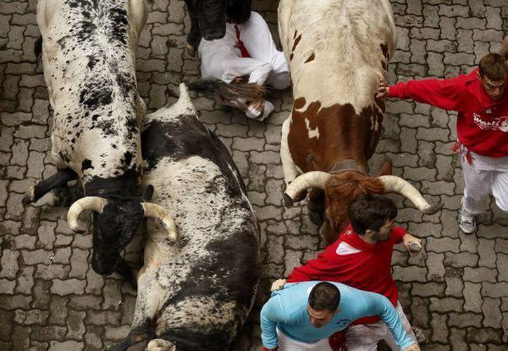 Entre dos mil y tres mil personas corren cada día el encierro, un recorrido de 850 metros delante de seis toros por el centro de Pamplona. (Agencias)