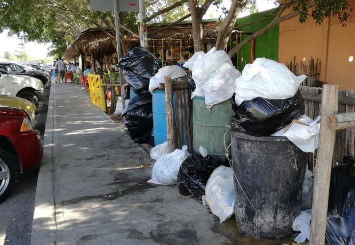 La basura se traslada al relleno sanitario o la única planta recicladora que existe en Mérida. (SIPSE)