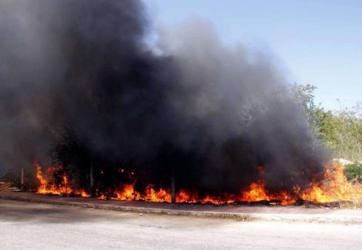 Unidades de bomberos de la Secretaría de Seguridad Pública combatieron el fuego, en los tres casos registrados. (SIPSE)