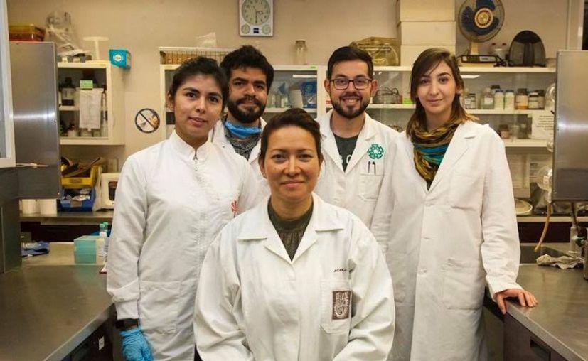 La doctora Eva Ramón Gallegos con su equipo (Foto: UNAM)