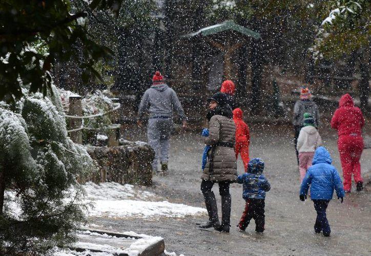 En México apenas se está cumpliendo la primera mitad de la temporada invernal y Segob anuncia que se acercan los meses más fríos. (Notimex)