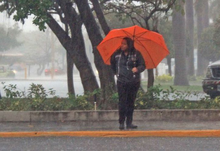 Prevén afectación en la zona centro y sur de la entidad por lluvias. (Jesús Tijerina/SIPSE)