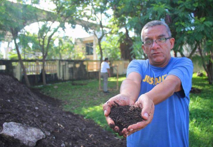 Se espera sembrar cilantro, rábano, betabel, lechuga y zanahoria. (Daniel Pacheco/SIPSE)