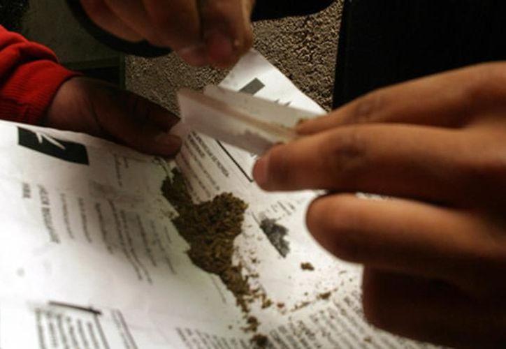 A pesar de la cantidad de drogas que tenían en su poder los acusados disfrutan de la libertad. (Agencias)