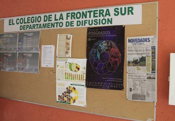 Durante los tres días del evento se realizarán exposiciones, paneles, mesas de discusión y ponencias. (Ángel Castilla/SIPSE)