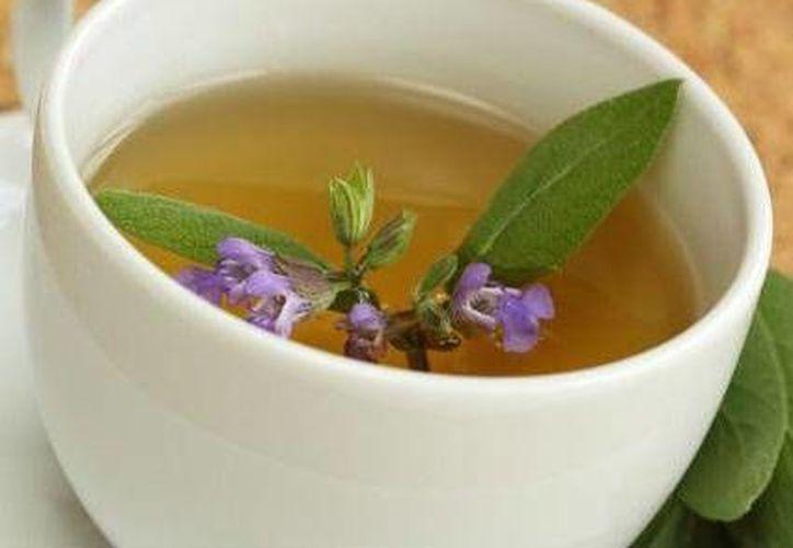Algunos tés son efectivos para el combate de los malos olores corporales. (Redacción/SIPSE)