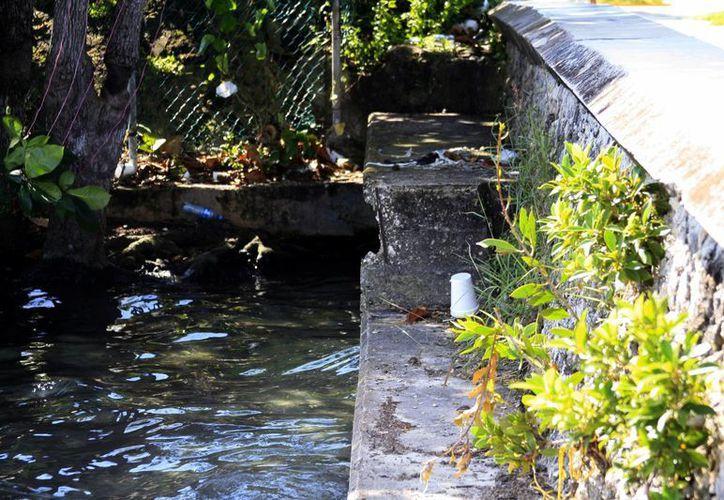 La enfermedad es causada por condiciones insalubres que contaminan el agua. (Harold Alcocer/ SIPSE)