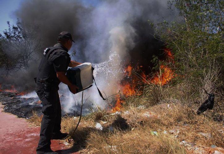La Dirección de Siniestros y Rescates de la SSP reportó que del 15 al 22 de abril de este año otorgó un total de 177 servicios en Mérida y 16 en el interior del Estado. (SIPSE)
