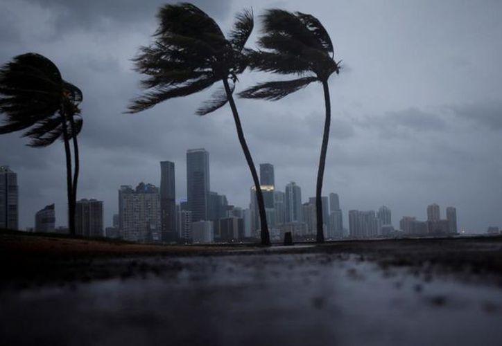 Por los desastres que ha causado Irma en Florida, un chico decidió darle una ofrenda para que se calme. (Foto: Vanguardia)