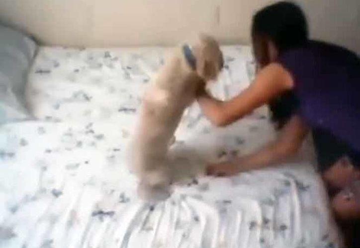 """La adolescente aparentemente """"juega"""" sobre una cama con su perro llamado Oso. (Captura de pantalla)"""