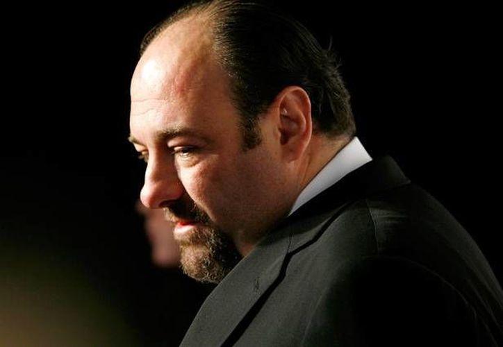 Gandolfini desarrolló una gran carrera en el teatro, el cine y la tv. (hollywood.com/Archivo)