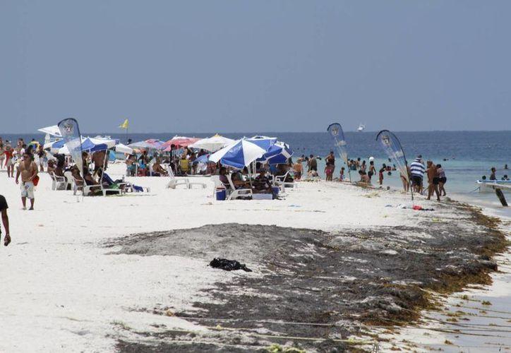 Se prevé una ocupación del 80% en el verano. (Sergio Orozco/SIPSE)