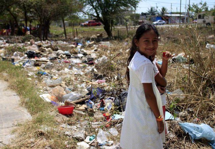Cada quintanarroense genera un promedio de 1.240 kilogramos de basura al día. (Paloma Wong/SIPSE)