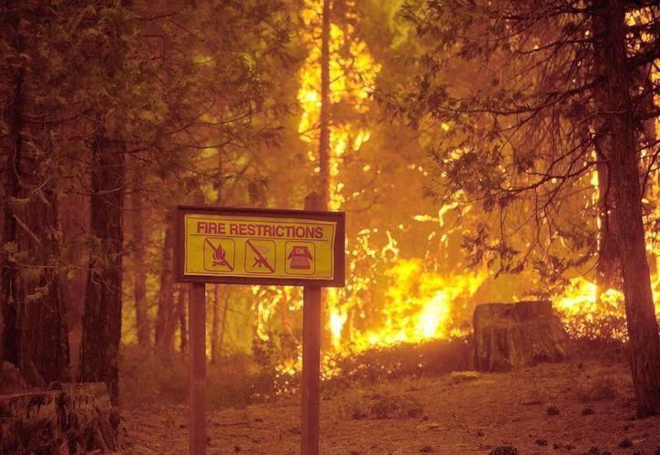 Vista del fuego del incendio que arrasa California y que se extiende al Parque Nacional de Yosemite en Tuolumne, California. (EFE)