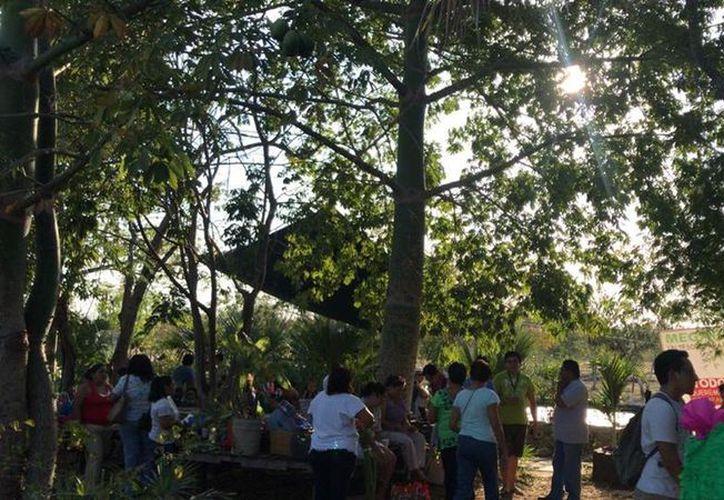 El parque lineal los Henequenes etapa III y IV es una de las obras que aún falta por concluir por la Comey. (Facebook)