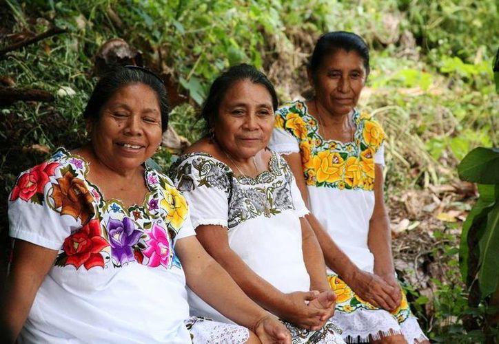 Un análisis del Inmegen indica que el componente genético de los yucatecos es puramente maya. (Archivo/SIPSE)
