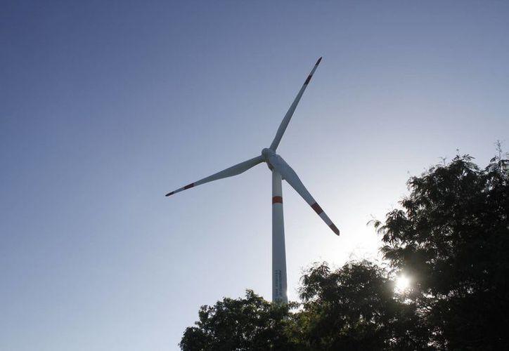 El costo medio para los grandes parques eólicos modernos está alrededor de mil dólares por kilovatio. (Israel Leal/SIPSE)