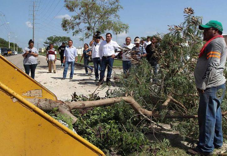 El secretario General del Gobierno, Víctor Caballero, supervisó los trabajos de limpieza en Ciudad Caucel. (Milenio Novedades)