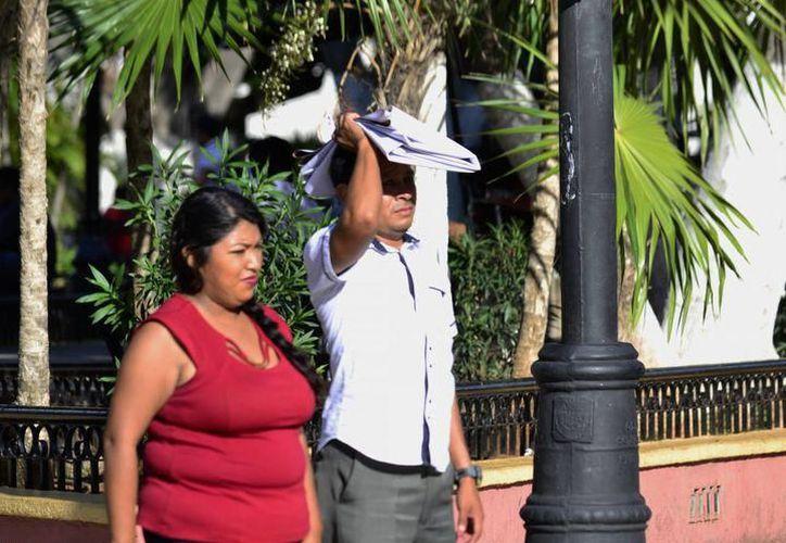 Se prevén registros máximos de 35.0 grados Celsius en Yucatán, mientras que para Campeche y Quintana Roo la mayor será de 34.0 grados. (SIPSE)